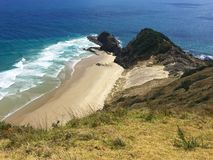 Sacred pohutukawa tree and beach at Cape Reinga, New Zealand Stock Photos