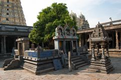 Sacred tree mango dedicated to the union of Siva and Parvati. Ekambareswarar temple is a Hindu temple. Kachi Ekambam old Royalty Free Stock Image
