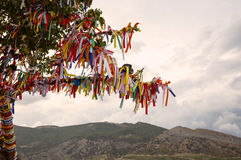 The sacred wishing tree of desires and dreams Royalty Free Stock Image