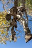 Sacrificial horse Stock Photo