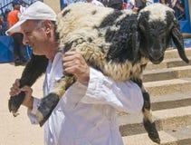 Sacrificio di Passover del samaritano Immagine Stock