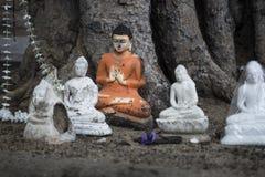 Sacrificios de Buda debajo del árbol del bodhi, Anuradhapura, Sri Lanka Fotografía de archivo