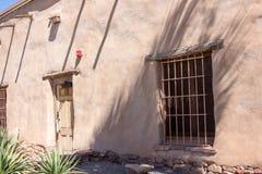 Sacrred Datura Bush in the Wild Royalty Free Stock Image