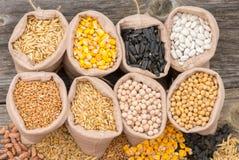 Sacs avec des grains de céréale Photos libres de droits