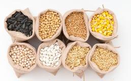 Sacs avec des grains de céréale d'isolement Image libre de droits
