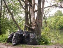 Sacs de déchets en plastique sous l'arbre forestier près de petite livre Image libre de droits