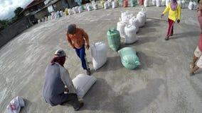 Sacs de levage principaux à travailleurs de rizerie de riz sec clips vidéos