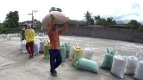 Sacs de levage principaux à travailleurs de rizerie de riz sec banque de vidéos