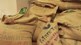 Sacs des grains de café dans l'atelier de torréfaction sur la vidéo courante de longueur de fond de café banque de vidéos
