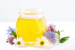 sacuda con la miel en un fondo blanco, primer de la flor fresca Imagen de archivo libre de regalías