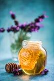 Sacuda con la miel y el peine en fondo vibrante Foto de archivo libre de regalías