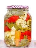 Sacuda con las salmueras que contienen la coliflor, pepino, pimienta roja Fotografía de archivo libre de regalías
