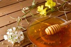 Sacuda la miel con el panal en la visión elevada la tabla de madera Imágenes de archivo libres de regalías