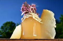 Sacuda por completo de la miel fresca deliciosa, de los pedazos de panal y de las flores salvajes en colmenar Fotos de archivo