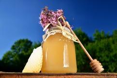 Sacuda por completo de la miel fresca deliciosa, del pedazo de cazo de la miel del panal y de flores salvajes en colmenar Imagen de archivo libre de regalías