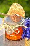 Sacuda por completo del pedazo fresco delicioso de la miel de cazo de la miel del panal y de flores salvajes Fotografía de archivo libre de regalías