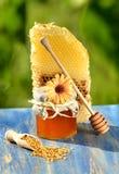 Sacuda por completo del polen delicioso de la miel, del panal y de la abeja Foto de archivo libre de regalías