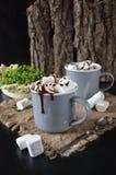 Sacudida de chocolate con la salsa y las melcochas del goteo Imágenes de archivo libres de regalías