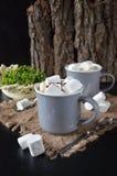 Sacudida de chocolate con la salsa y las melcochas del goteo Foto de archivo libre de regalías