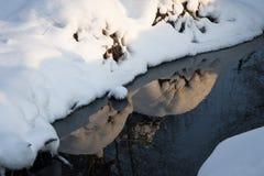Sacudidas del hielo Fotografía de archivo