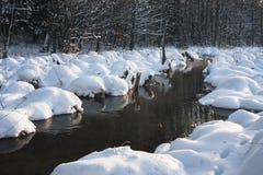 Sacudidas del hielo Foto de archivo libre de regalías