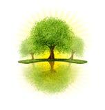 sadów drzewa royalty ilustracja