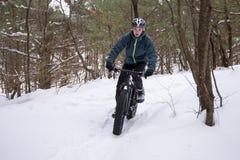 Sadło Jechać na rowerze w lesie Zdjęcie Stock