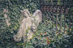 Sad angel, a statue near the church in Kutna Hora. Sedlec Ossuary Czech: Kostnice in Sedci.  stock photos