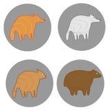 Sad animals set. Sadly fox, wolf, cat and bear on gray circles Vector Illustration