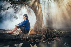 Sad Asian woman sitting Under the tree in the park ,She passed the story lot worse, Sad Woman stock images