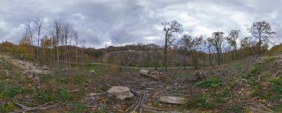 Sad autumn forest panorama Stock Images