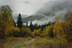 Sad autumn. This is sad morning in Caucasus mountains in autumn Stock Photography