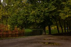 A sad autumn park in cloudy weather royalty free stock photos