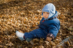 Sad baby on dry leaves Stock Photo