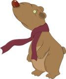 Sad bear Stock Images