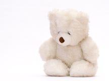 Sad bear stock photography