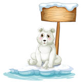 A sad bear above the iceberg with an empty signboard Royalty Free Stock Image