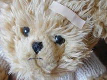 Sad bear with bandaid royalty free stock photo