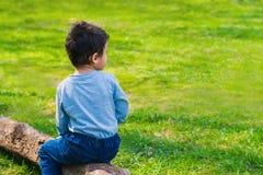 Boy 4 years old sitting alone on a log. Sad boy sitting alone on a log in the meadow stock photo