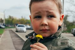 Sad boy sniffs dandelion, spring. children`s psychological trauma. unhappy child royalty free stock images
