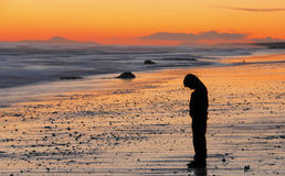 Sad boy sunset. Sad boy, sadness, alone, lonely concept with person standing on beach at sunset royalty free stock image