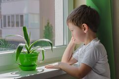 Sad Boy Wants To Walk On The Street, The Child Sits Near The Window And Looks At Him Sadly. Quarantine Self-isolation Due To Stock Images