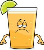 Sad Cartoon Beer with Lime Royalty Free Stock Photos