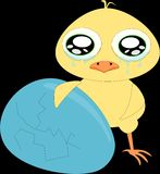 Sad cartoon chicken with blue broken egg 1 Royalty Free Stock Photography