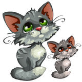 Sad cartoon gray kitty, vector animal Stock Images