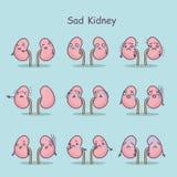 Sad cartoon kidney Stock Images