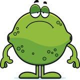Sad Cartoon Lime. A cartoon illustration of a lime looking sad Royalty Free Stock Images