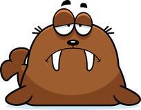 Sad Cartoon Walrus Royalty Free Stock Images
