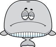 Sad Cartoon Whale Royalty Free Stock Images