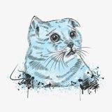 Sad cat. A hand drawn illustration of a sad cat Stock Photos